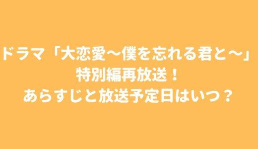 ドラマ「大恋愛~僕を忘れる君と~」特別編再放送で放送予定日はいつ?