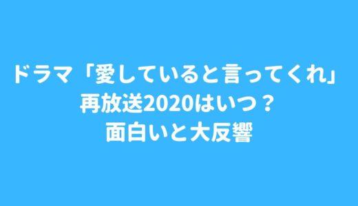 ドラマ「愛していると言ってくれ」再放送2020はいつ?面白いと大反響